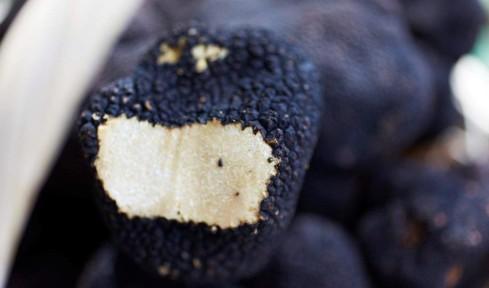 Book of Luxury Trufle truffles